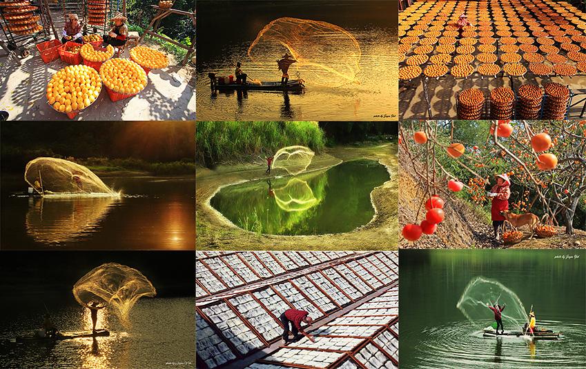 1026竹苗人文风景一日游:新埔柿饼节,新竹米粉,夕阳下