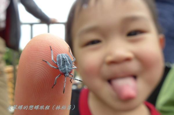 指导老师;台北市立动物园