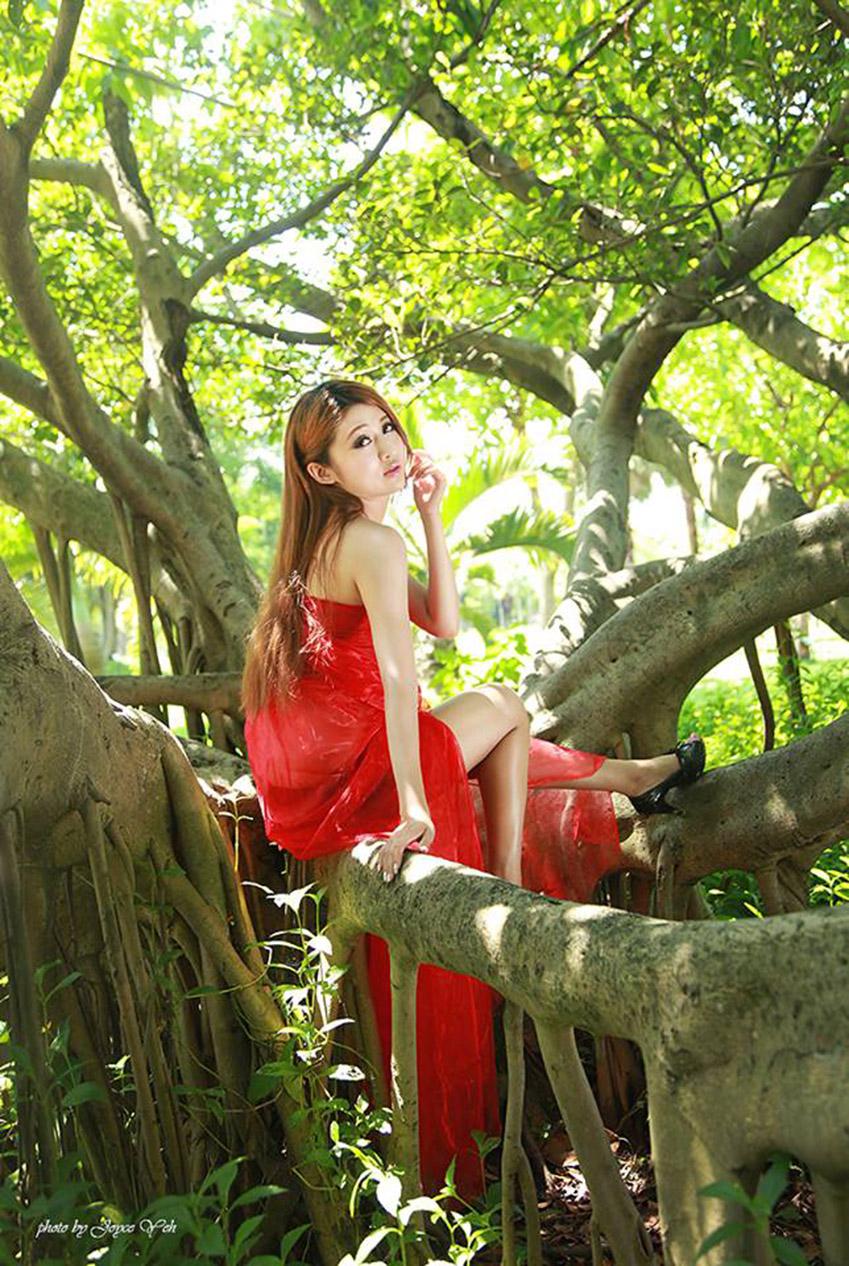 招财好运风景树图片_风景520