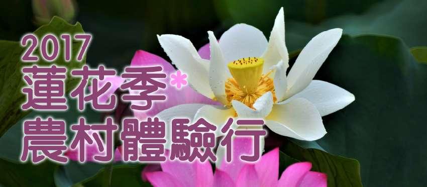 2017蓮花季農村體